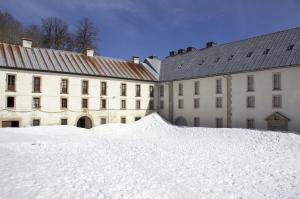 Snow in Roncesvalles