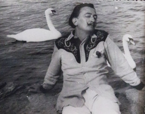 Dali and swans