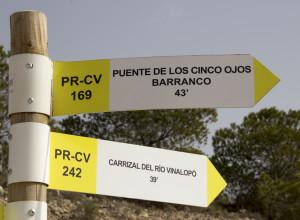PR-CV 169