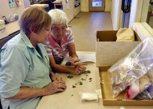 Archaeologist and CDAS volunteer working with artificacts