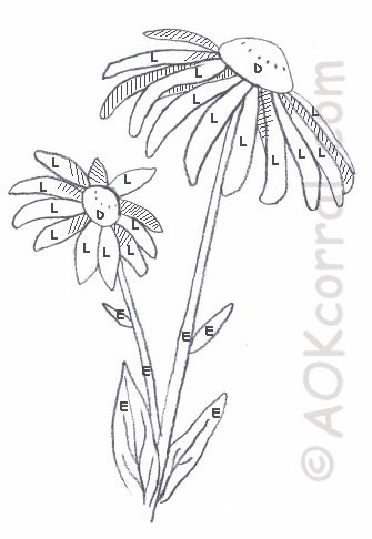 Black Eyed Susan Flower Painting Instructions