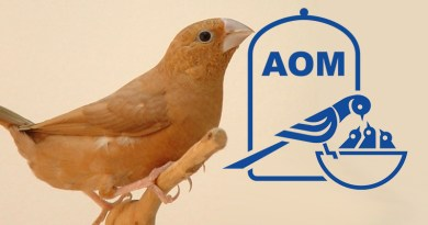 9 Mostra Ornitologica 2001