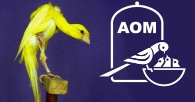 22 Mostra Ornitologica 2017