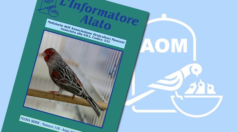 Informatore Alato 2020 - N 118