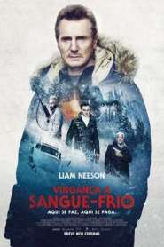 Vingança a Sangue Frio (2019) Dublado / Dual Áudio BluRay 720p 4K 2160p 1080p MKV | MP4