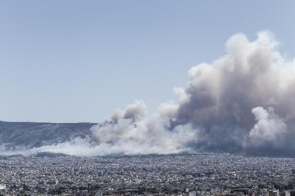 Wildfire at Kareas region, in Athens, on July 17, 2015 / ???????? ???? ??????? ??? ?????, ???? ?????, 17 ???????, 2015