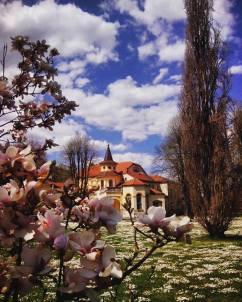 Banja Koviljača