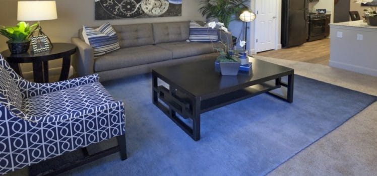 pictures of living room furniture arrangements black and silver curtains arranging for any apartment space apartmentguide com whether you re moving into a new place or want to perform mini makeover on your current learning the basics placement can make