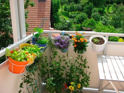 Simple Landscaping Ideas On A Budget Apartments Com