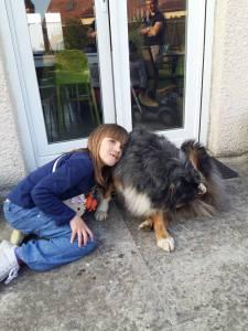 chien 3