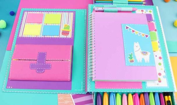 cactus folder organizer