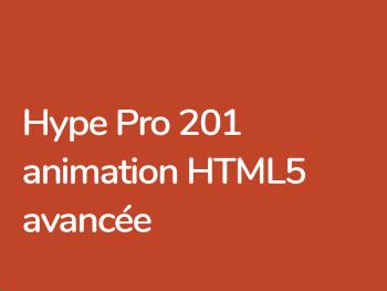 Formation Hype Pro 3 pour codeurs JavanScript Hype API