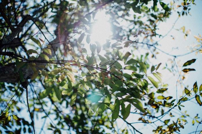 Baliweddingphotographers-arikavillaweddingcanggu-baliwedding-pandeheryana-destinationwedding-9