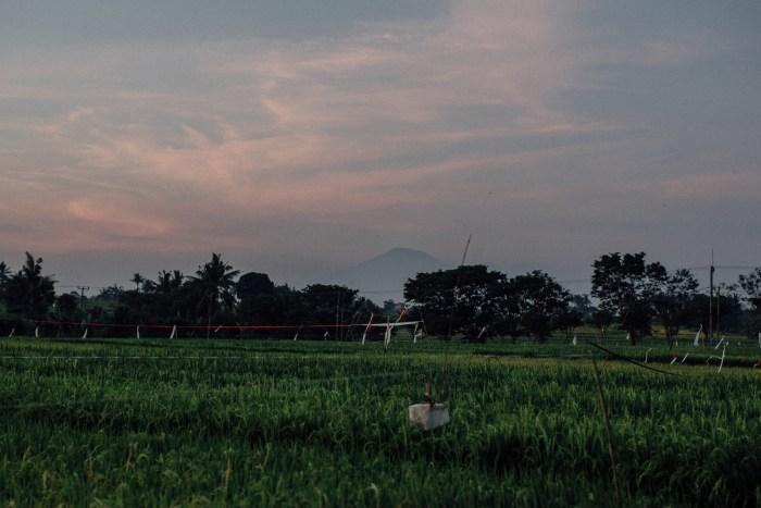 baliweddingphotography-ChalinaEstatewedding-lombokweddingphotography-lembonganwedding-baliphotographers-pandeheryana-bestweddingphotoinbali-84