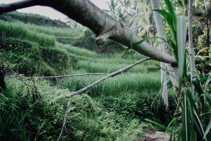 baliweddingphotographers-pandeheryana-bestbaliphotographers-weddinginbali-preweddinginbali-engagementphotography-vscofilmpreset-lombokweddingphotography_55