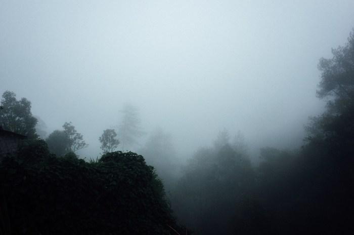 apelphotography-ricohgrii-newricoh-reviewcamera-ricohreview-pandeheryana_07