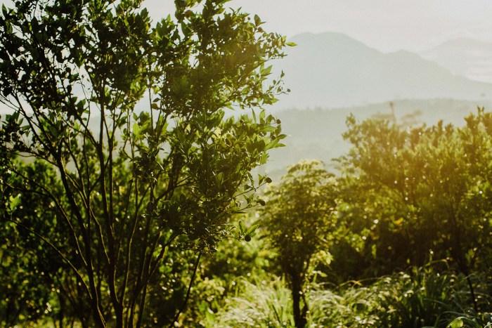 baliweddingphotography-balibasedweddingphotographers-apelphotography-pandeheryana-baturmountprewedding-bestweddingphotographers-2