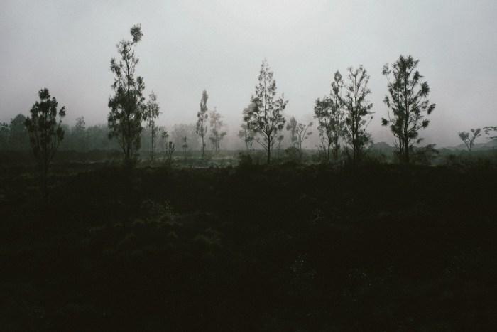 baliweddingphotography-sangastory-aryawirasantosa-tutdedharmawan-engagement-apelandjeje-baliweddingphotography_1