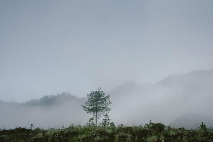 baliweddingphotography-sangastory-aryawirasantosa-tutdedharmawan-engagement-apelandjeje-baliweddingphotography_39