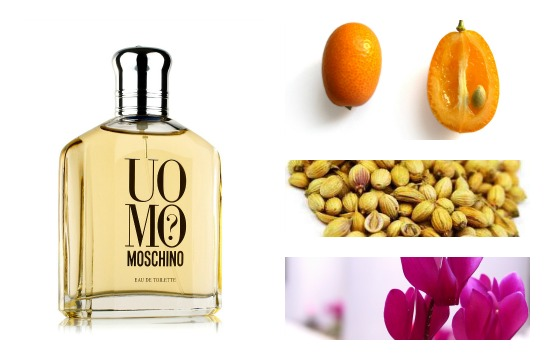 Uomo Moschino perfume notes