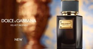 4fc130a35 عطر فلفيت إنسينسو من دولتشي أند غابانا Velvet Incenso D&G