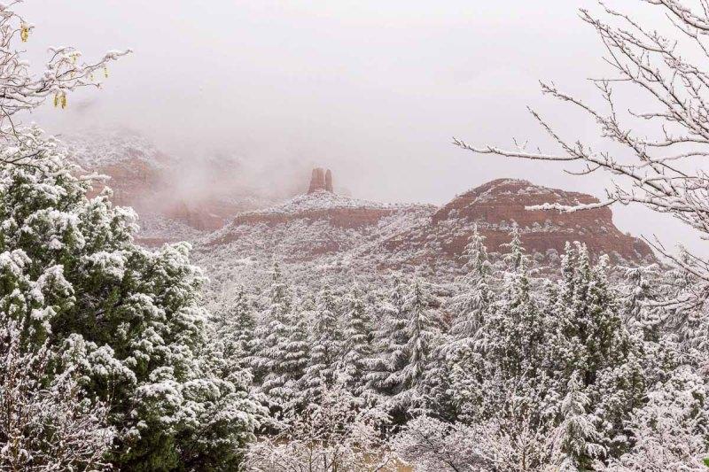 Foggy, Snowy morning in Sedona, Arizona