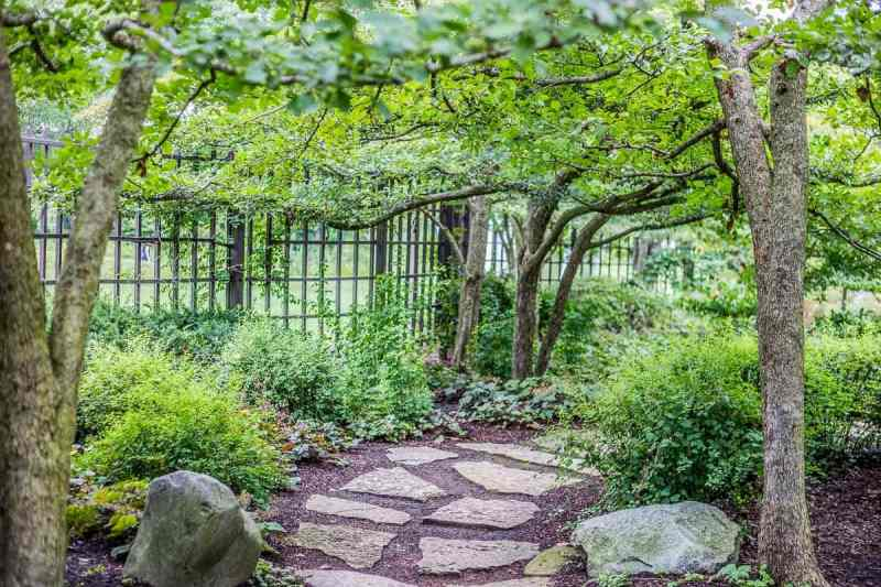 Stone Path Shaded by the Leaves of Trees