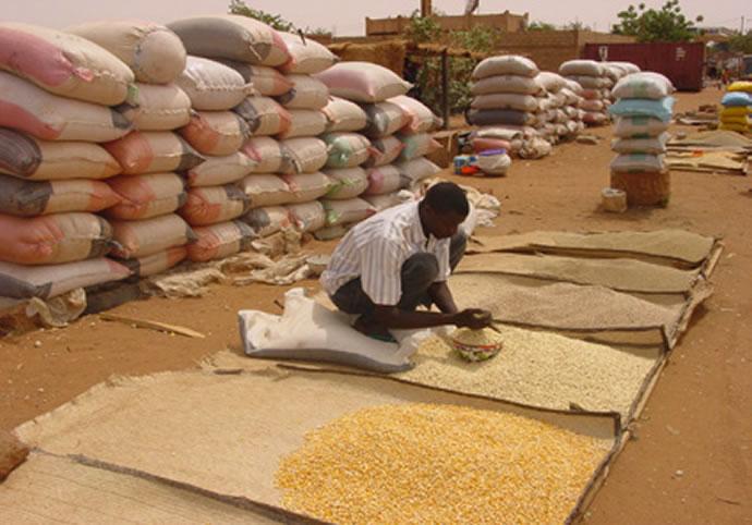 Bulletin DE SUIVI DE LA CAMPAGNE AGROPASTORALE EN AFRIQUE DE L'OUEST