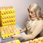 Mujeres del sector gastronómico darán charlas