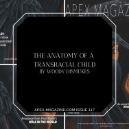 The Anatomy of a Transracial Child