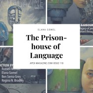 The Prison-house of Language