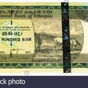 Ethiopia 100 Birr currency note,