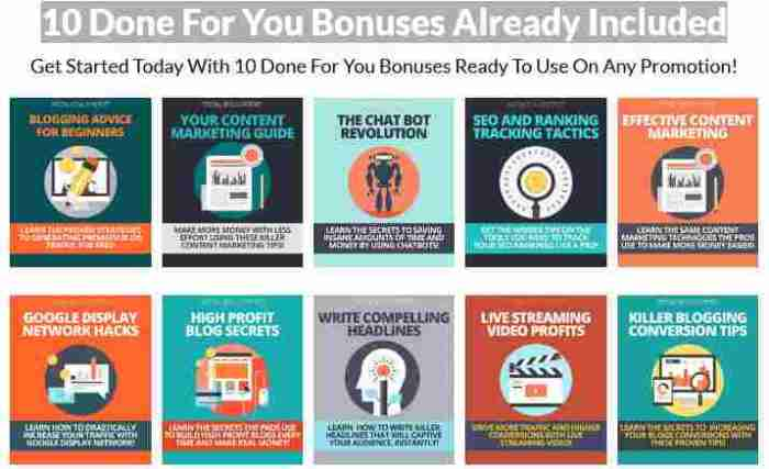 10-DFY-Bonus_pages-Incuded