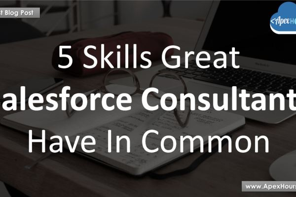 Salesforce Consultants Skills