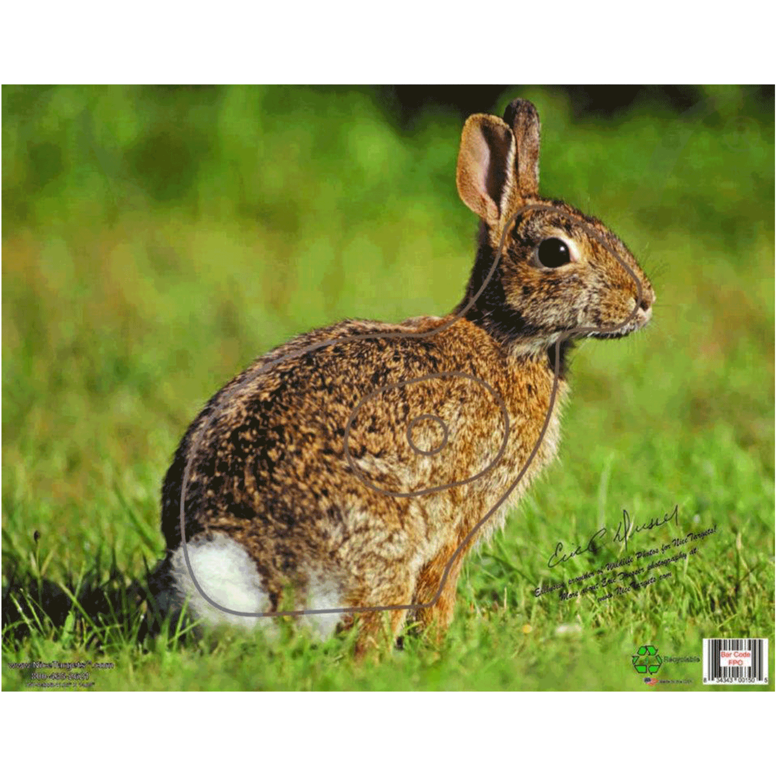 RABBIT TARGET FACE  THIN PLASTIC SHEET  FOR ARCHERY AND