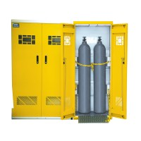 Gas Cylinder Storage Cabinets - Apex Scientific South Africa