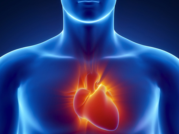 Testosterone Therapy Treats Cardiovascular Disease