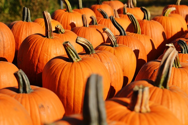 """stacks of pumpkins"""