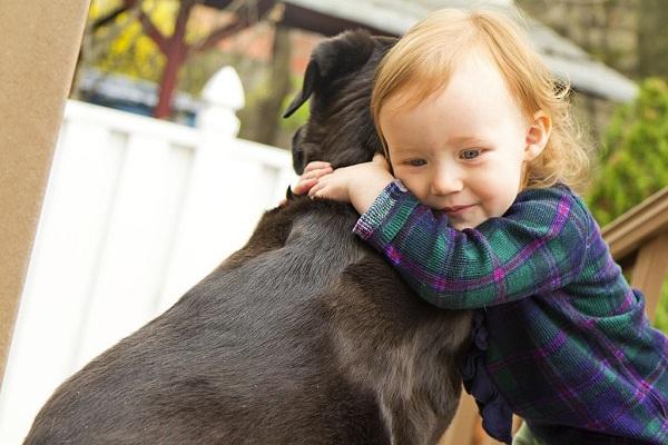 A little girl hugging a dog