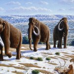 Scientists Claim That They Can Now Clone Wooly Mammoths