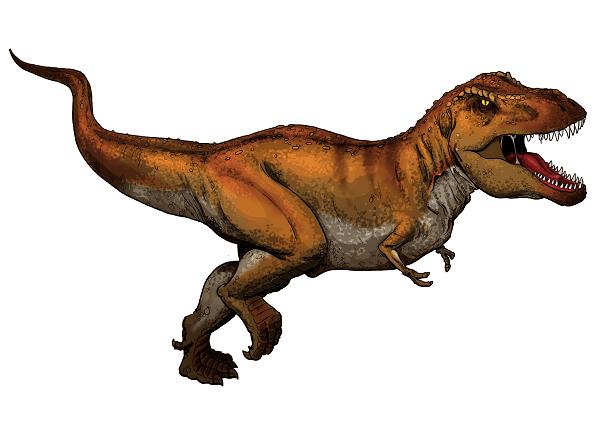 Tyrannosaurus Rex illustration