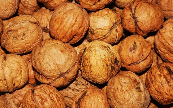 Brown walnuts in shells