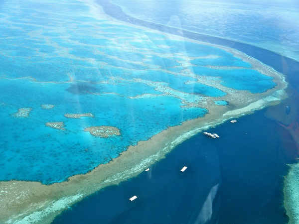 Great Barrier Reef on sixth life in 30000 years, study reveals