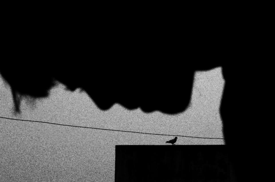 © Amit Patel