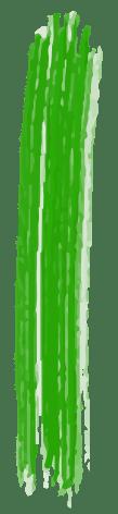 rabisco-lateral