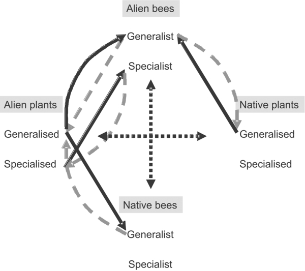 Ecological impacts of invasive alien species on bees