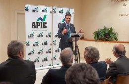 Pedro Sánchez, Secretario General del PSOE, se dirige al público tras ser nombrado Socio de Honor de APIE durante los premios Tintero y Secante 2014.