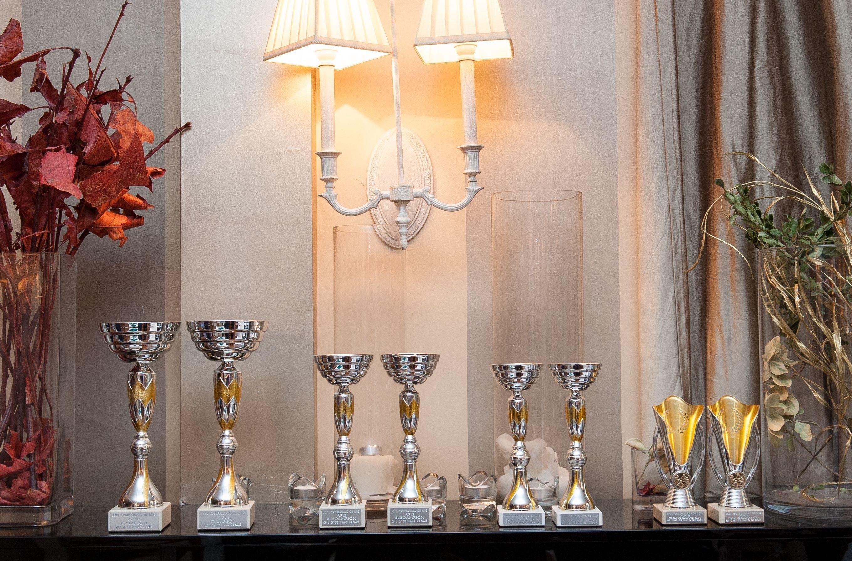 Los trofeos del XXIV Torneo de Mus de la APIE, aguardando a sus ganadores.