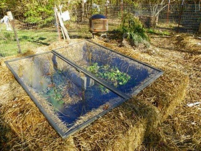 All One Hydroponic Grow Box