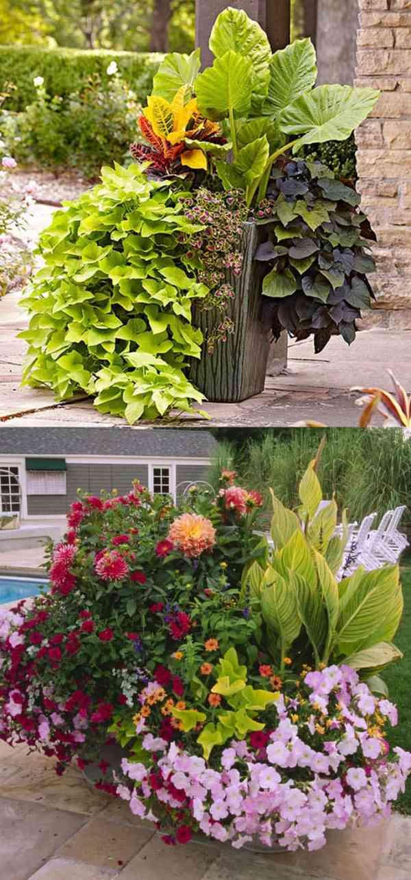 stunning container garden planting